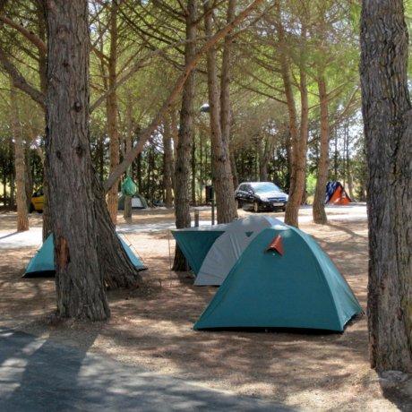 Parcelas - Complejo Camping Bolaso
