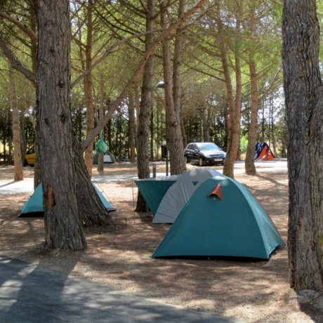 parcelas-camping-03