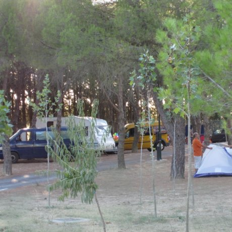parcelas-camping-04
