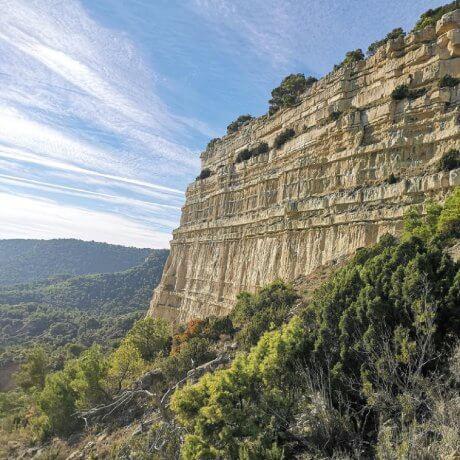 Excursiones Bardena Aragonesa